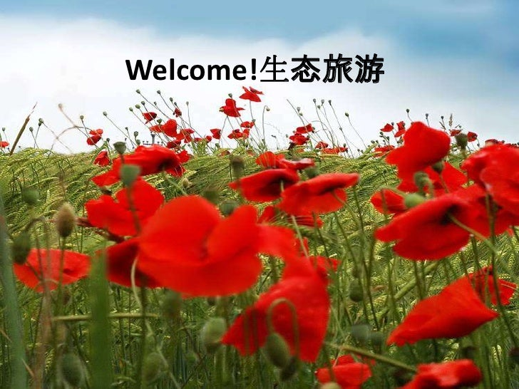 Welcome!生态旅游<br />