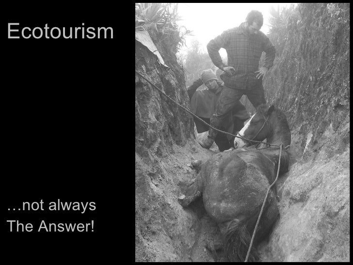 Ecotoursim...not always the answer