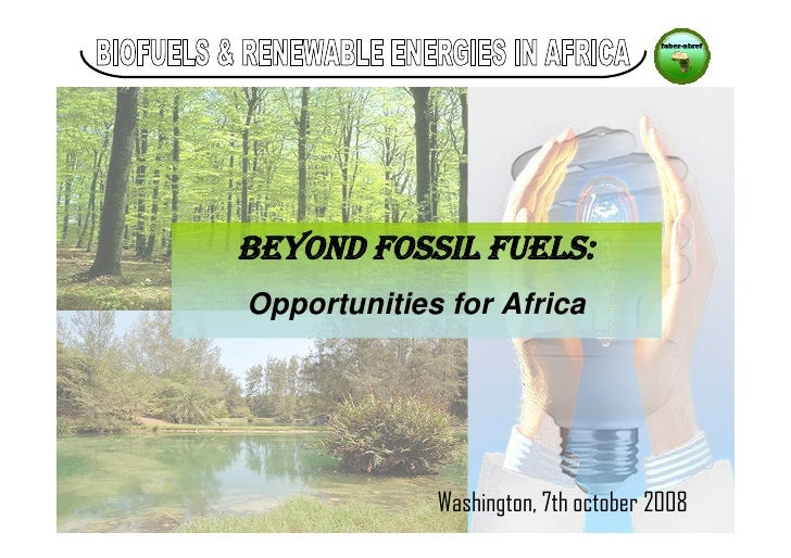 Beyond Fossil Fuels: Biofuel Opportunities for Africa