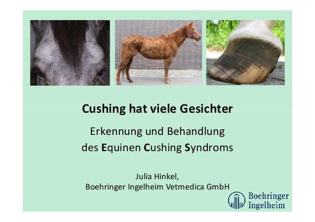 Cushing hat viele Gesichter Erkennung und Behandlung des Equinen Cushing Syndroms Julia Hinkel, Boehringer Ingelheim Vetme...