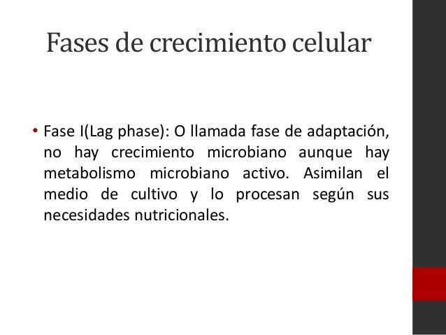 Cinetica de Crecimiento Microbiano Hay Crecimiento Microbiano