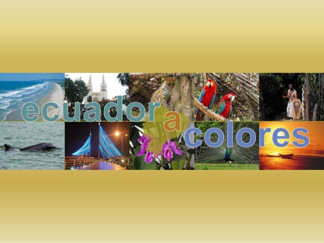 El Ecuador tiene un limite al norte con Colombia, al oeste con el océano Pacífico y al sur y al este con el Perú.
