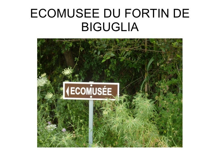 ECOMUSEE DU FORTIN DE      BIGUGLIA