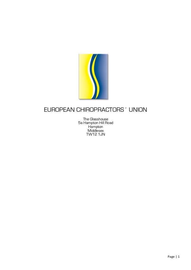 Ecu position paper