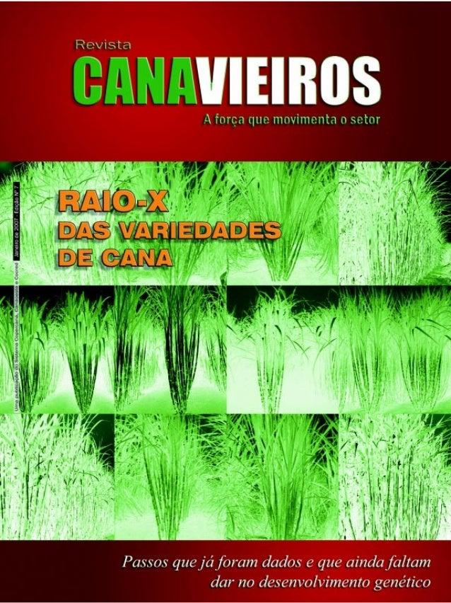 Revista Canavieiros - Janeiro de 2007