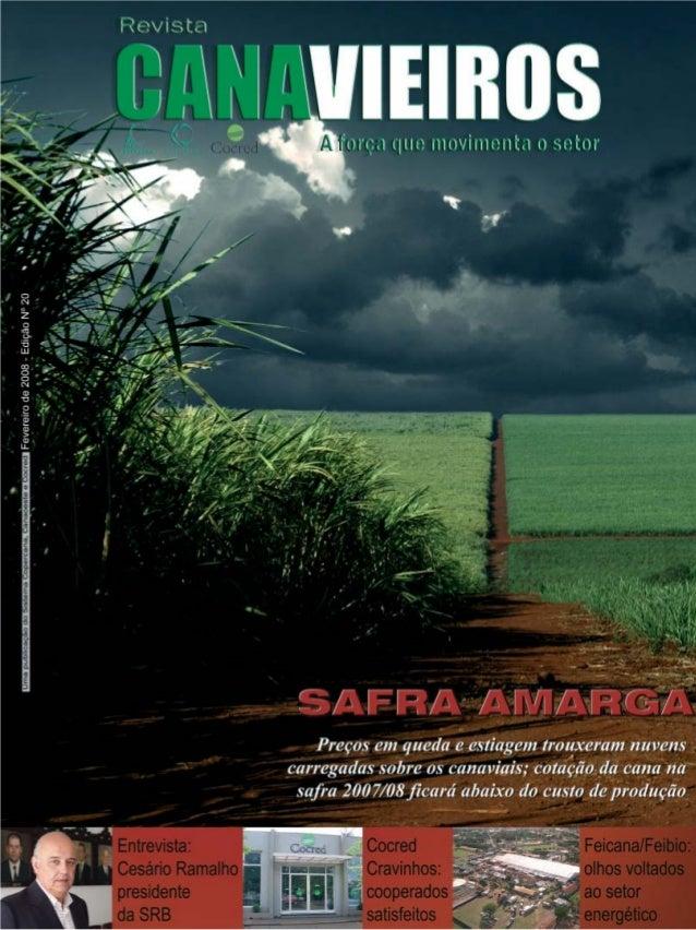 Revista Canavieiros - Fevereiro de 2008  1