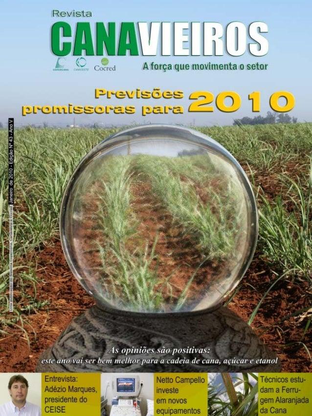 Revista Canavieiros - Janeiro de 2010  1
