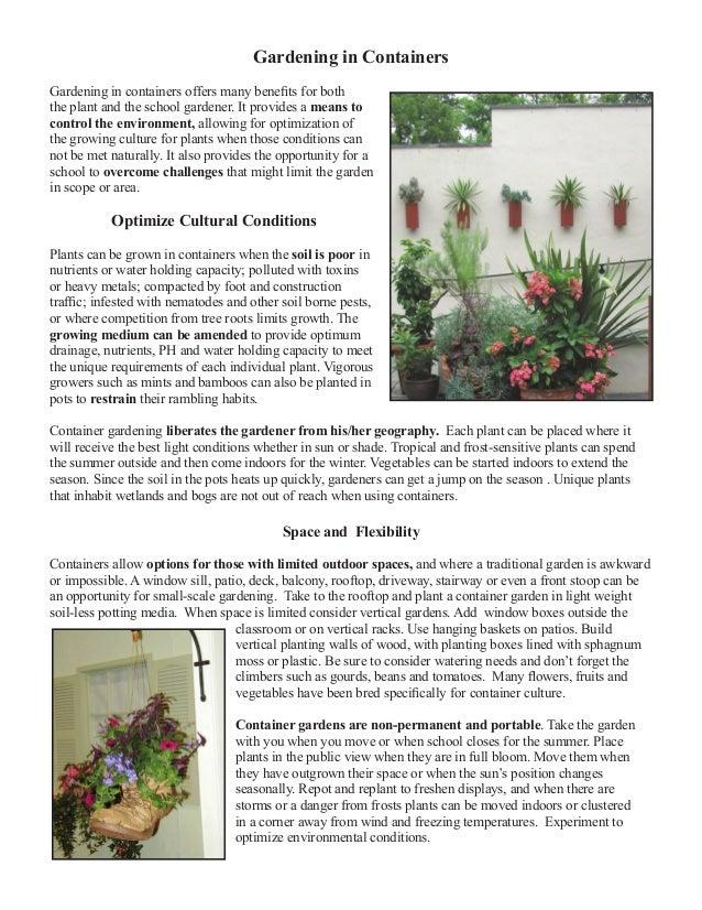School Gardening in Containers