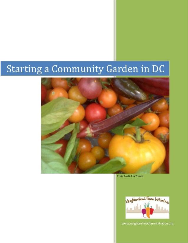 Starting a Community Garden in DC