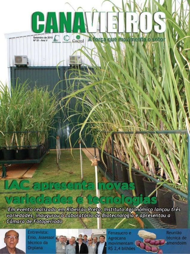 1  Revista Canavieiros - Setembro de 2010