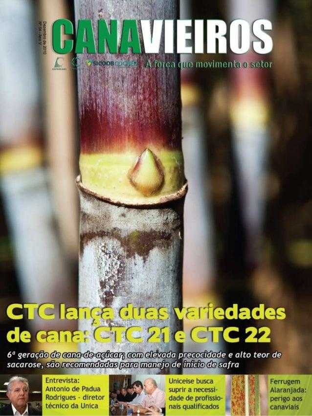 1  Revista Canavieiros - Dezembro de 2010
