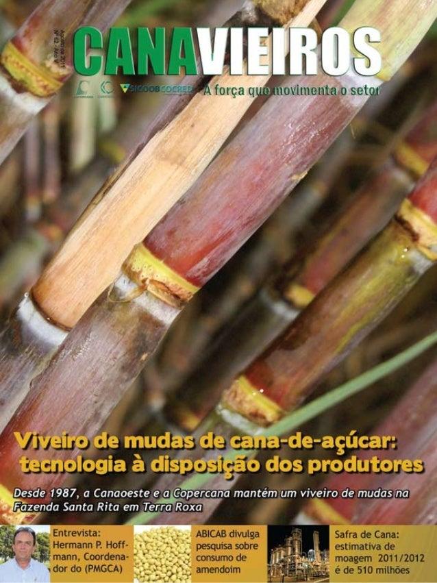 1  Revista Canavieiros - Agosto 2011