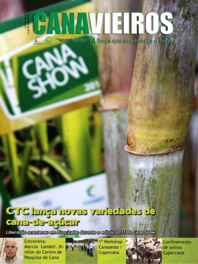 1  Revista Canavieiros - Dezembro 2011