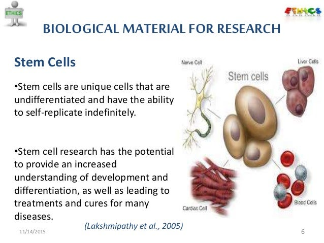the importance and the issues with stem cell research While an important step toward realizing the promise of stem cell research, this approach raises new ethical and regulatory issues that must be addressed carefully  limitations of george w bush administration's policy on human embryonic stem cell research.