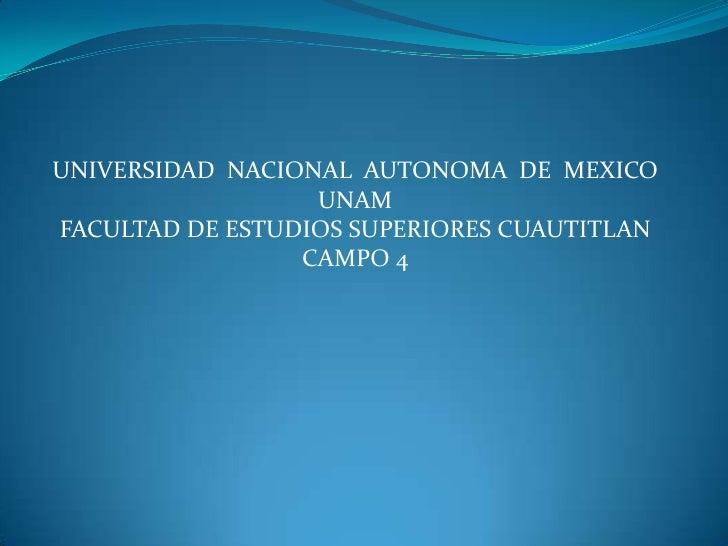 UNIVERSIDAD  NACIONAL  AUTONOMA  DE  MEXICO<br />UNAM<br />FACULTAD DE ESTUDIOS SUPERIORES CUAUTITLAN<br />CAMPO 4<br />