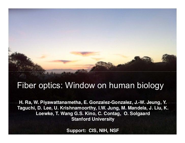 Fiber Optics - Window on Human Biology:  Olav Solgaard