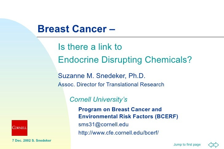Breast Cancer - Is there a link to endocrine disrupting chemicals?  Breast Cancer - Is there a link to endocrine disrupting chemicals?