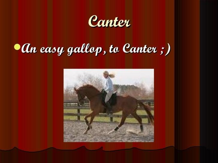 Canter <ul><li>An easy gallop, to Canter ;) </li></ul>