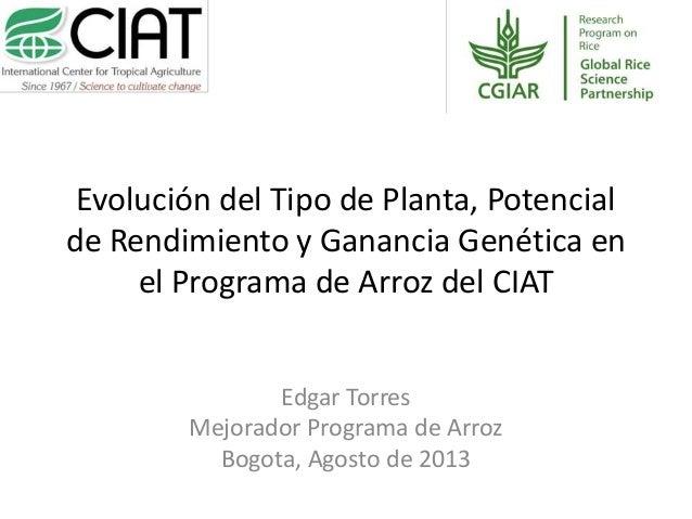 Evolución del Tipo de Planta, Potencial de Rendimiento y Ganancia Genética en el Programa de Arroz del CIAT, por Edgar Torres