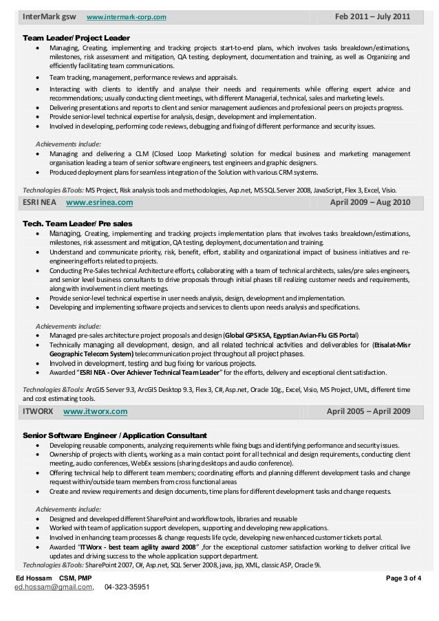 project management resume examples it summary samplesit skills team leader resume software team leader resume sample