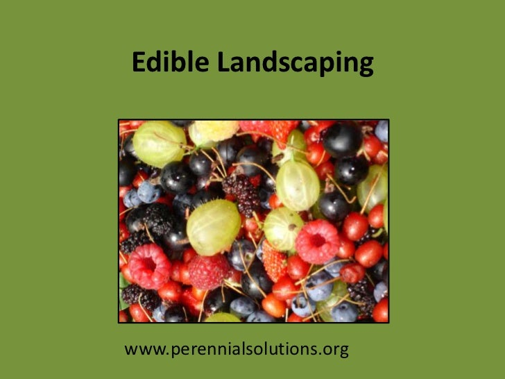 Edible Landscaping<br />www.perennialsolutions.org<br />