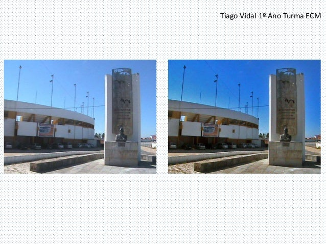 Tiago Vidal 1º Ano Turma ECM