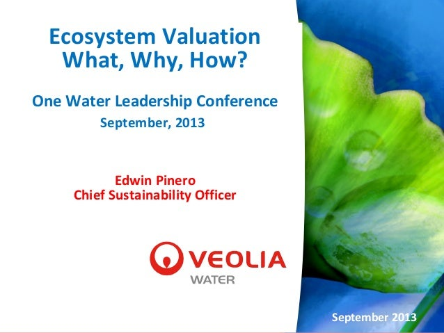 Ecosystem Valuation What, Why, How? One Water Leadership Conference September, 2013 Edwin Pinero Chief Sustainability Offi...