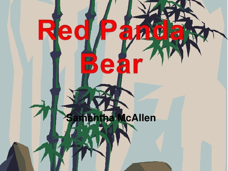 Red Panda Bear<br />Samantha McAllen<br />