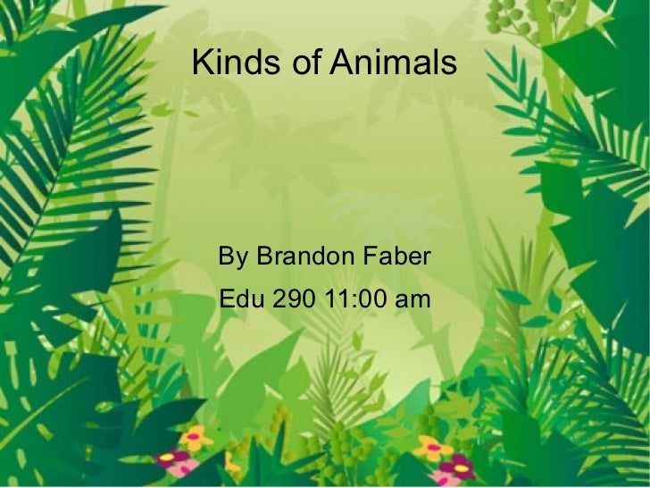 Kinds of Animals By Brandon Faber Edu 290 11:00 am