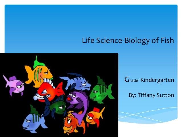 Life Science-Biology of Fish Grade: Kindergarten By: Tiffany Sutton http