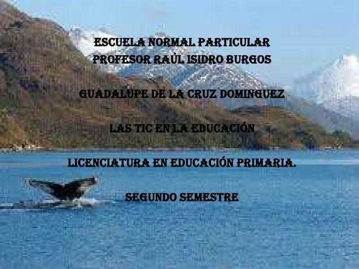 ESCUELA NORMAL PARTICULAR   PROFESOR RAÚL ISIDRO BURGOS GUADALUPE DE LA CRUZ DOMINGUEZ      LAS TIC EN LA EDUCACIÓNLICENCI...