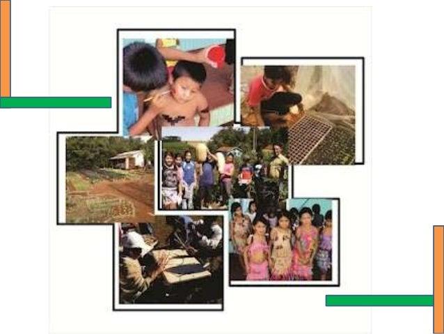 PNAIC - Educação do campo  unidade 7