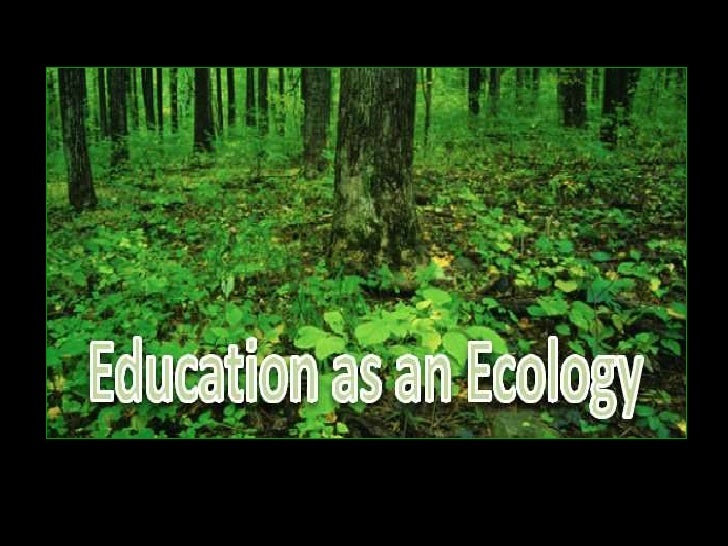 Education as an ecology