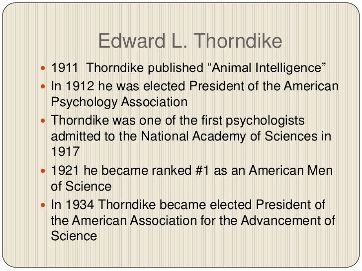 thorndike guys Thorndike synonyms, thorndike pronunciation,  unaccustomed to cross the pavement to his office unless escorted by bank messengers and plain-clothes men, .