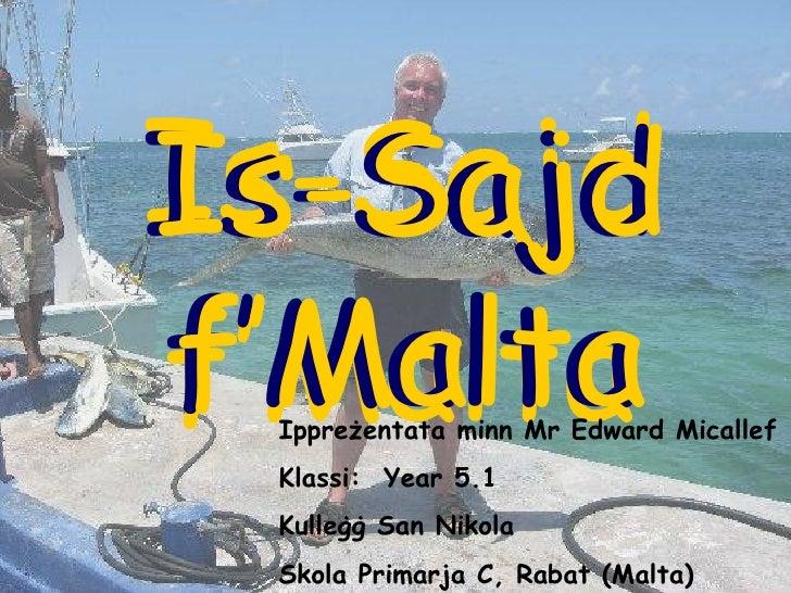 Is-Sajd f'Malta Is-Sajd f'Malta Is-Sajd f'Malta Ippreżentata minn Mr Edward Micallef Klassi:  Year 5.1 Kulleġġ San Nikola ...