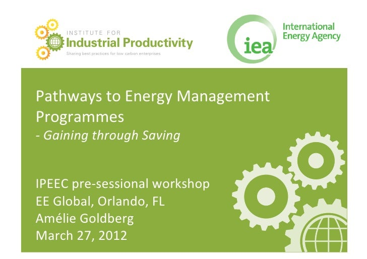 Pathways to Energy Management Programmes – Gaining through Saving, Amelie Goldberg