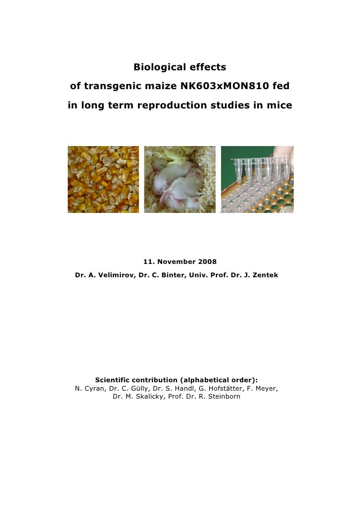Biological effects of transgenic maize NK603xMON810 fed in long term reproduction studies in mice                         ...