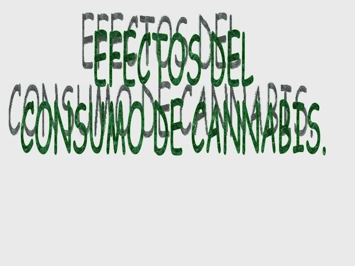 EFECTOS DEL  CONSUMO DE CANNABIS.