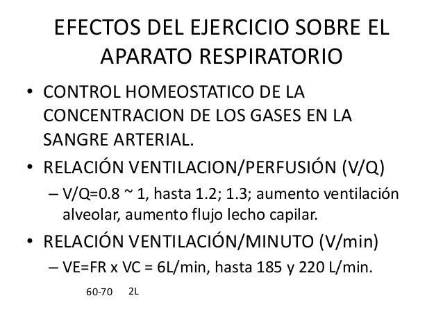 EFECTOS DEL EJERCICIO SOBRE ELAPARATO RESPIRATORIO• CONTROL HOMEOSTATICO DE LACONCENTRACION DE LOS GASES EN LASANGRE ARTER...