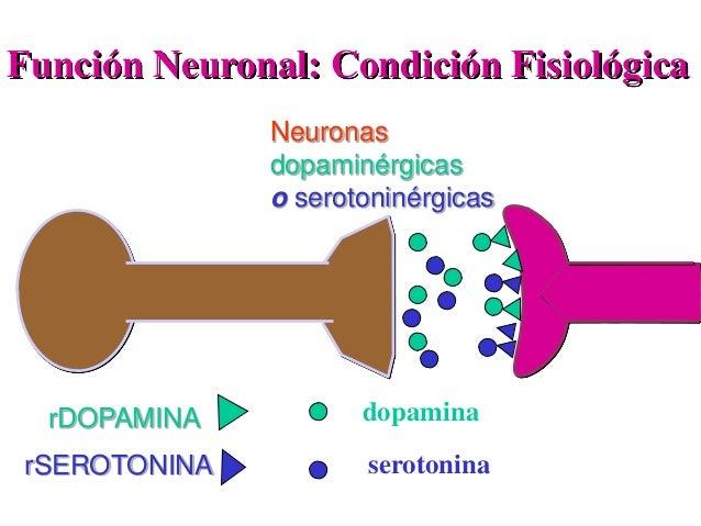 Función Neuronal: Condición Fisiológica rDOPAMINA rSEROTONINA dopamina serotonina Neuronas dopaminérgicas o serotoninérgic...