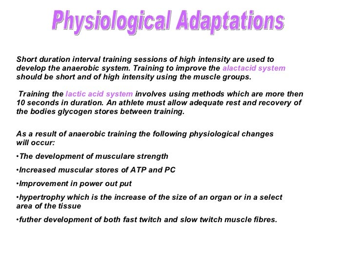 Effect Of Training On The Anaerobic Energy System