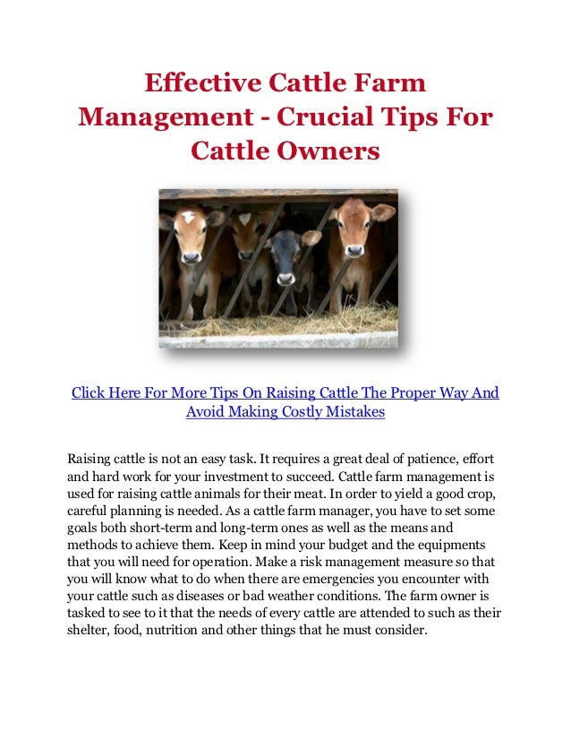 Effective Cattle Farm Management - Crucial Tips For       Cattle OwnersClick Here For More Tips On Raising Cattle The Prop...