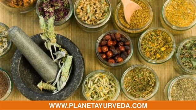 Natural herbal remedies for allergy
