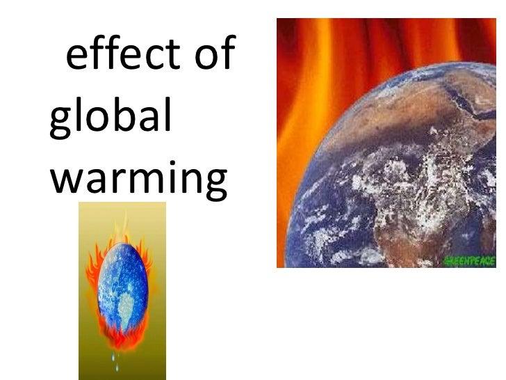 <ul><li>effect of global warming </li></ul>