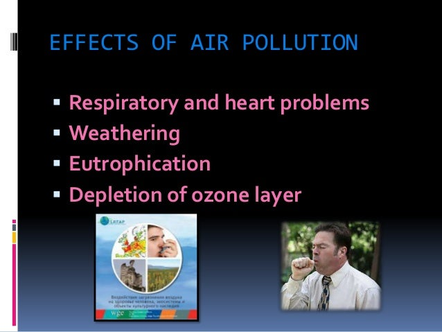 a study on the 3 main pollution effects to earth humans and living organisms Pollution and habitat destruction: the human factors contributing to endangerment & extinction  causes, and effects of destroying this living area  name and describe the three main types of.