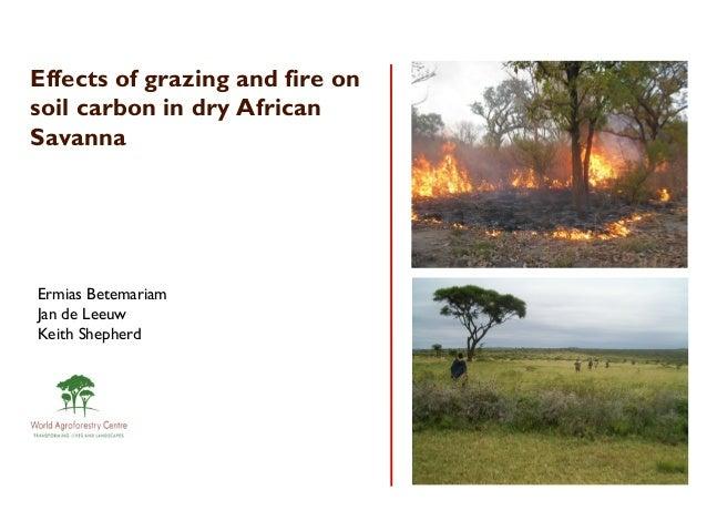 Effects of grazing and fire onsoil carbon in dry AfricanSavannaErmias BetemariamJan de LeeuwKeith Shepherd
