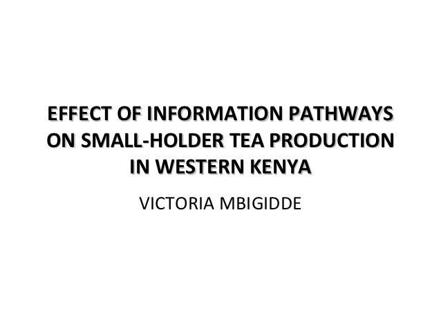EFFECT OF INFORMATION PATHWAYS ON SMALL-HOLDER TEA PRODUCTION IN WESTERN KENYA