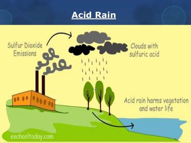 essay on acid rain pollution Air pollution is a serious problem in our society these days  lot of air pollution creates acid rain, which deteriorates things  this essay will deal with the.