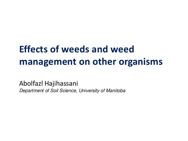 Effects of weeds and weed management on other organisms Abolfazl Hajihassani Department of Soil Science, University of Man...