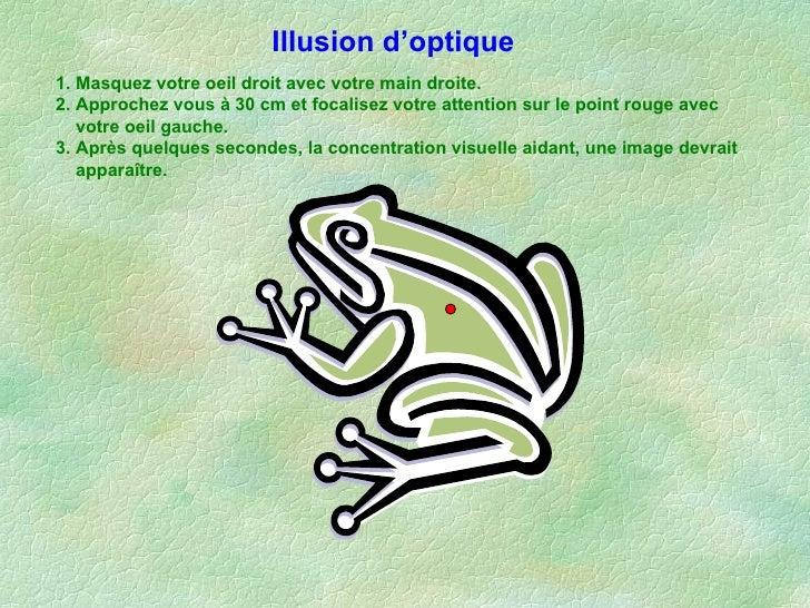 Effet Optic